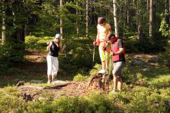 Nordic Walking Harrachov
